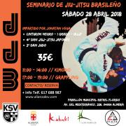 SEMINARIO DE JJB, 28 de ABRIL